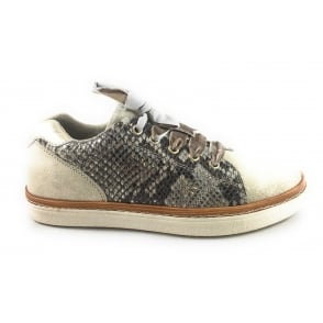 2/23731/39 Leslie Gold and Snake Print Casual Lace-Up Shoe