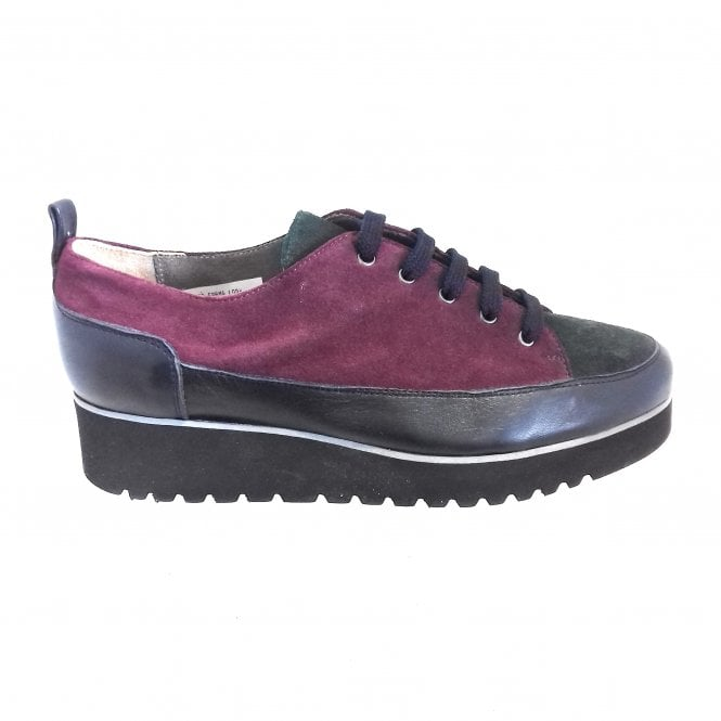 HB Lody Burgundy, Forest Green and Navy Lace-Up Casual Shoe