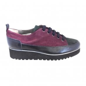 Lody Burgundy, Forest Green and Navy Lace-Up Casual Shoe